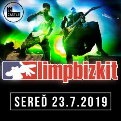 IN CASTLE 2019 / Limp Bizkit (US)